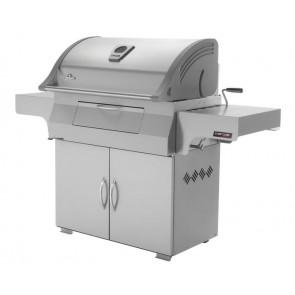 Napoleon Charcoal PRO605 - RVS