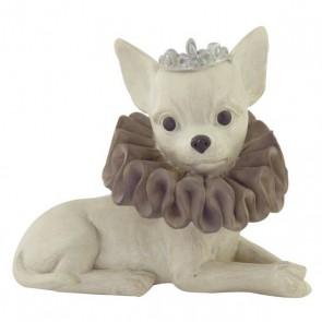 Beeld Chihuahua