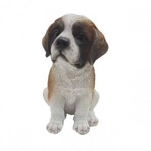 Sint- bernard pup zittend